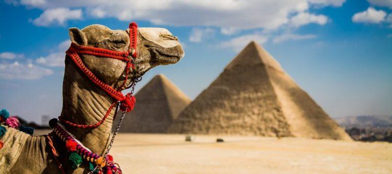 Египет у туроператоров снова в фаворе