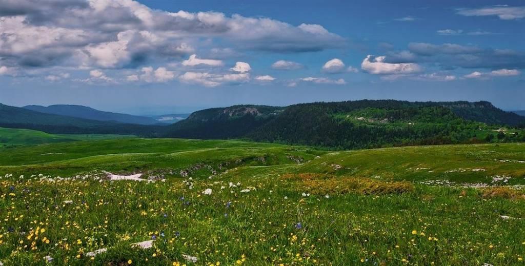 Комфортный отдых в Краснодарском крае